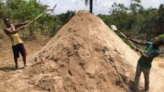 Sand -2